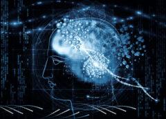 Train Your Brain Performance